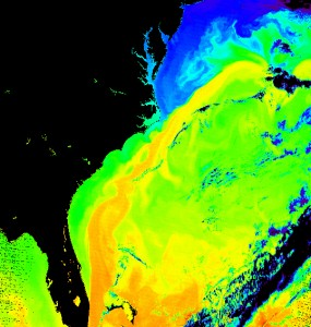 By Donna Thomas/MODIS Ocean Group NASA/GSFC SST product by R. Evans et al., U. Miami [Public domain], via Wikimedia Commons