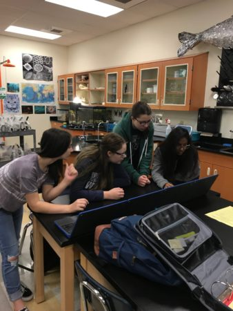 AP Biology students using Quizlet Live to review vocabulary for ecology.